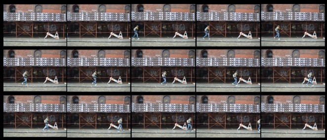 NY Tribute to Eadweard Muybridge - cropped for blog copy