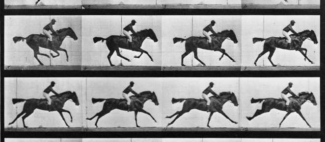 A NY Tribute to Eadweard Muybridge